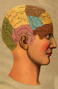 mapa-cerebro